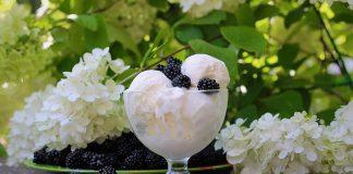 sorvete de frutas e natas