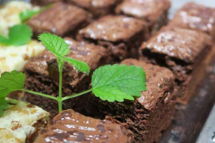 Bolo de chocolate com oreo vegan