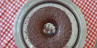 Pudim de chocolate macrobiótico vegan